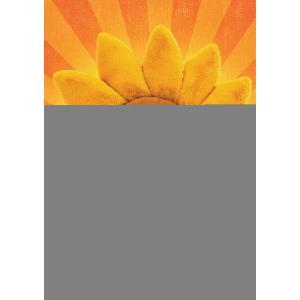 Jellycat - FLEU2S - Peluche fleur tournesol Fleury - l = 39 x H = 39 cm (457406)